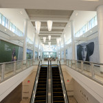 Mall graphics - adhesive vinyl wall murals produced and installed by CSI for Macerich at Tysons Corner Center - Interior Plaza Walkway